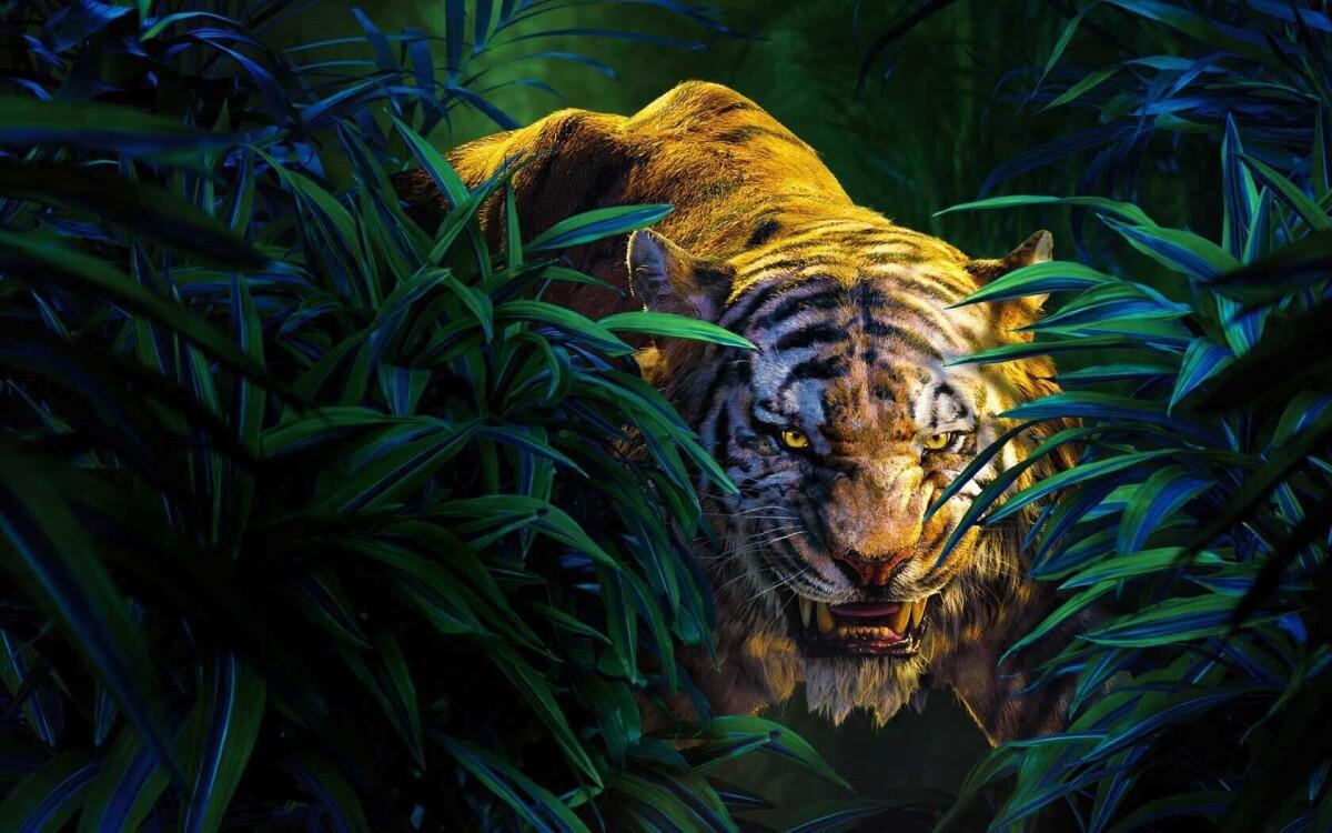 Веб-студия Tigerweb - Выходи на охоту с нами!